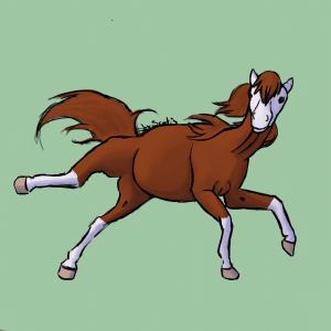 Cheval alezan qui tombe, dessin