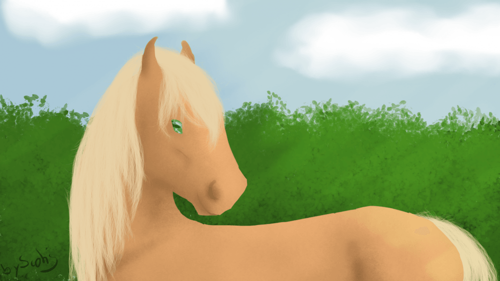 Dessin de cheval palomino