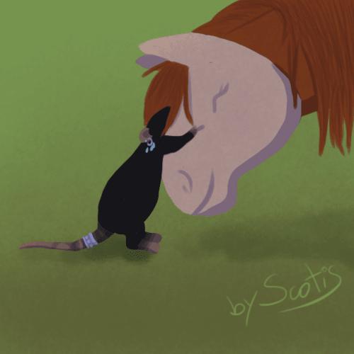 Câlin entre Anoukiss, ma jument et Luna, ma ratte