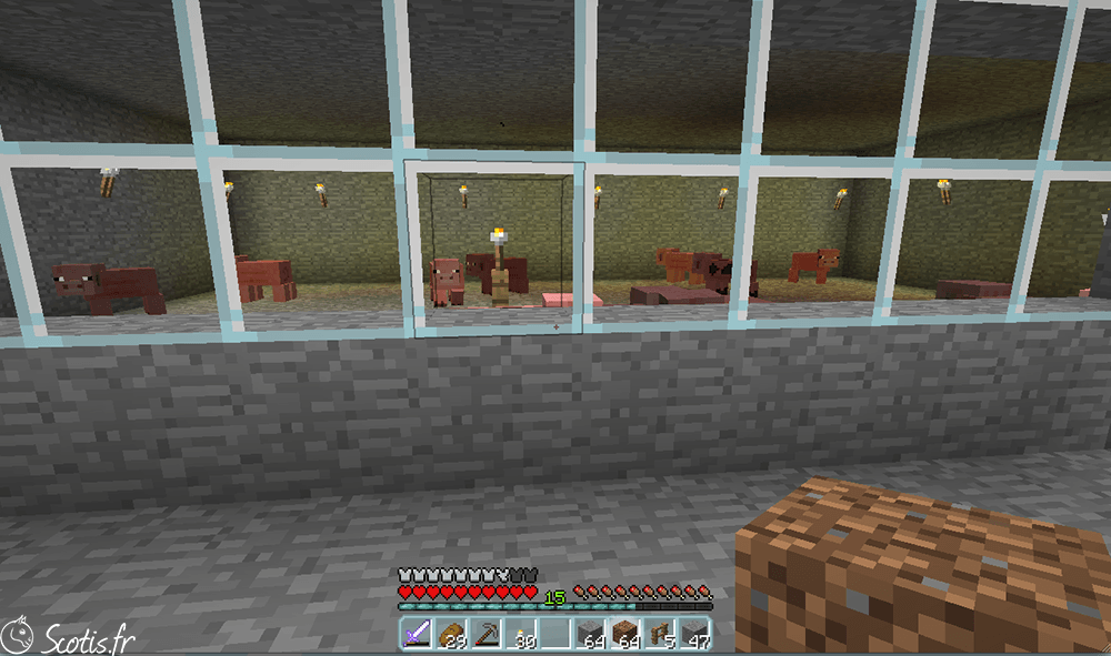 Elevage de Cochons Minecraft