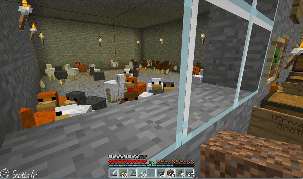 Elevage de poules Minecraft
