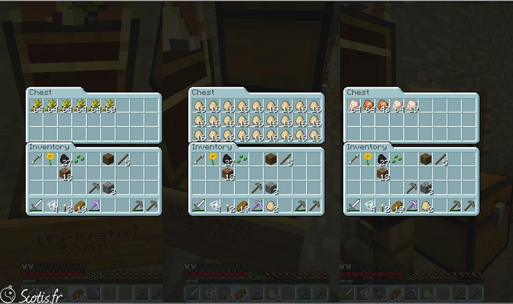 Coffres de farm
