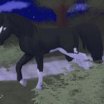 Cheval au clair de lune