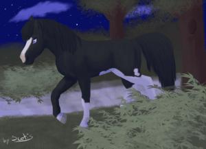 Dessin de Scotis représentant un cheval pie