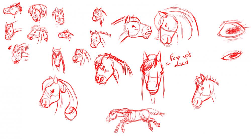 Croquis de recherche autour du cheval