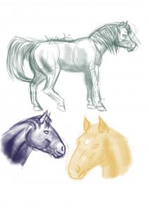 Quelques chevaux dessiné par Scotis