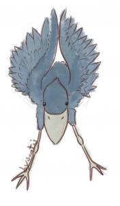 Shoebill par Scotis