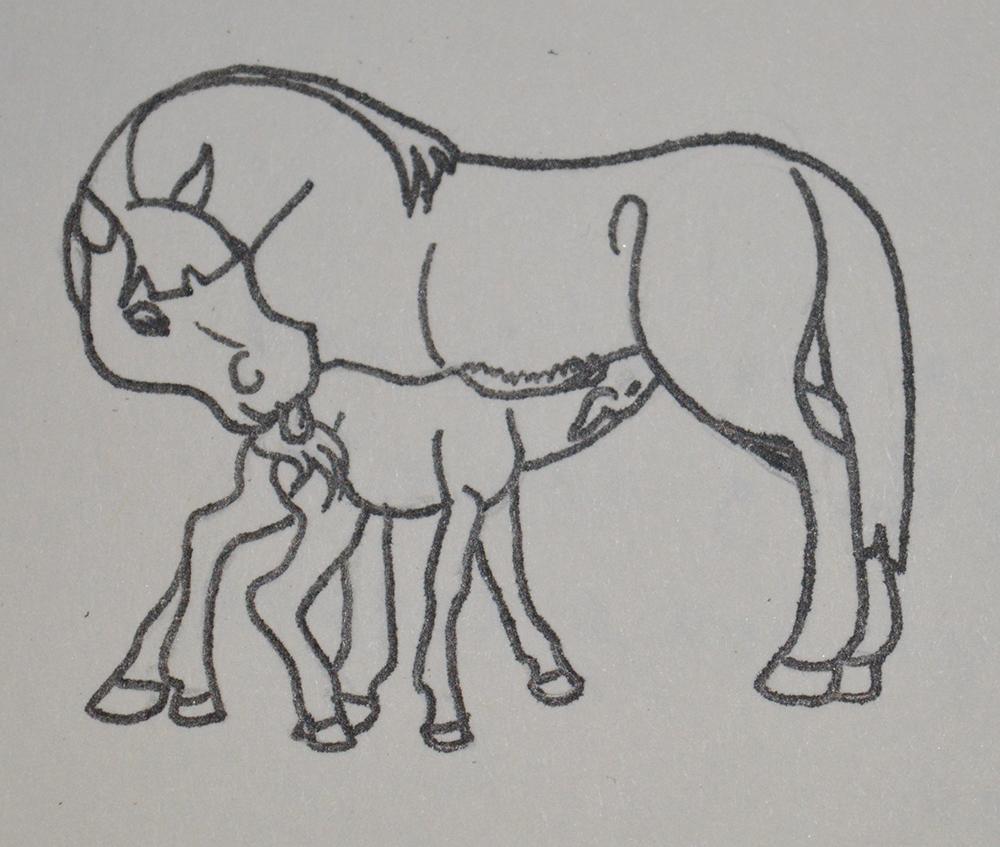 Poulain tétant sa mère, dessin par Scotis