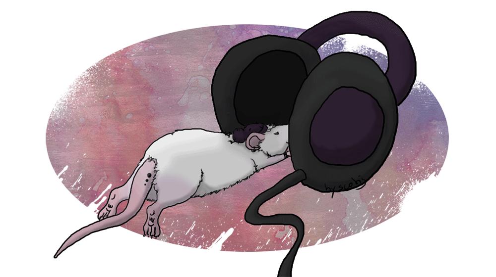 Dessin d'un rat punk écoutant de la musique par Scotis