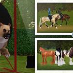 Couverture Facebook Scotis – Sims 3