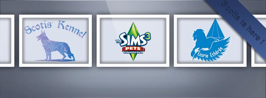Couverture Facebook Sims 3 Pets
