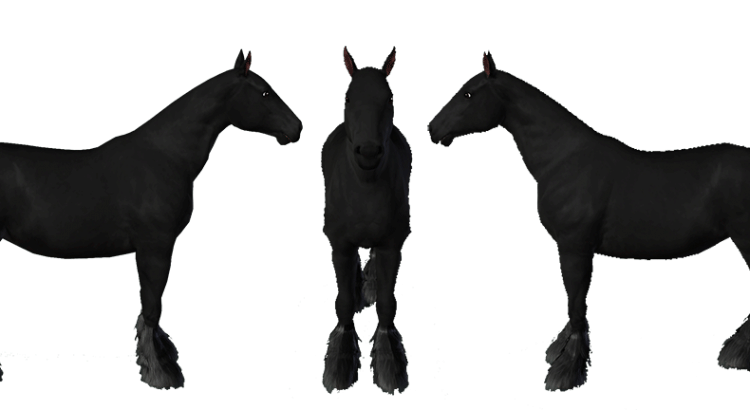 Template de cheval de trait Shire pour le jeu Sims 3 par Scotis