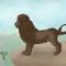 Lion – Majabu