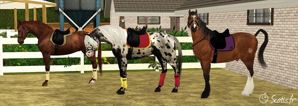 Couleur d'équipement de son cheval Sims 3