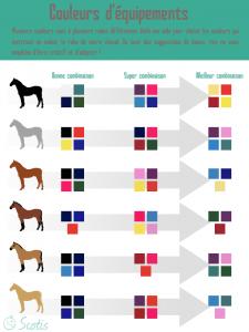 Infographie équestre pour aider les cavaliers à choisir la couleur de l'équipement de leur chevaux
