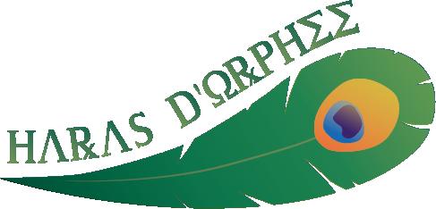 Exemple de logo pour une écurie Sims 3 fictive