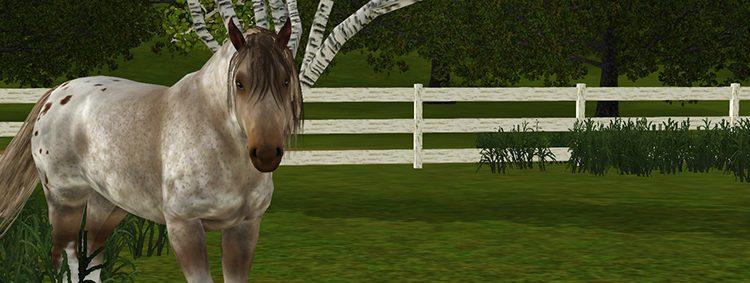 Screenshot jument irish cob Sims 3