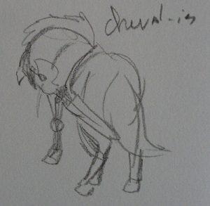 Croquis d'un cheval chevalier par Scotis