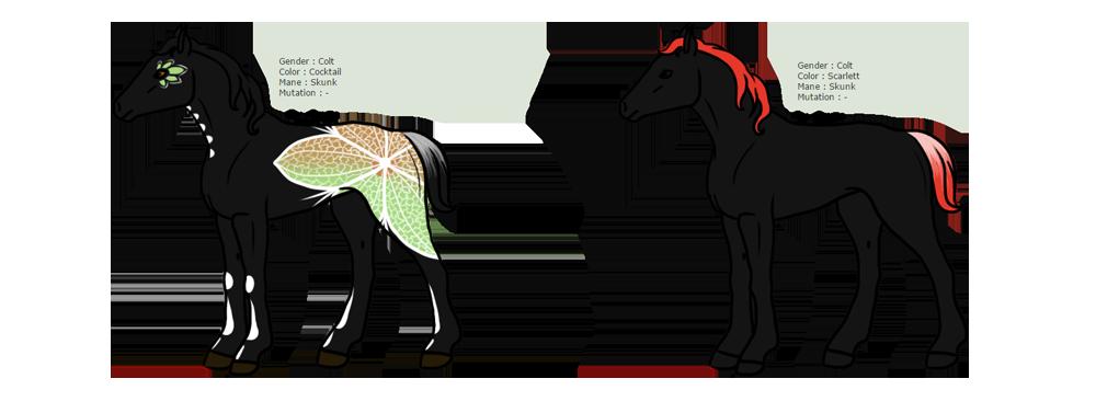 Design de deux poulains sur le thème des squelettes et fleurs