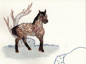 Cheval apaloosa peint à l'aquarelle par Scotis