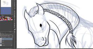 Bouillon d'un cheval avec une tresse