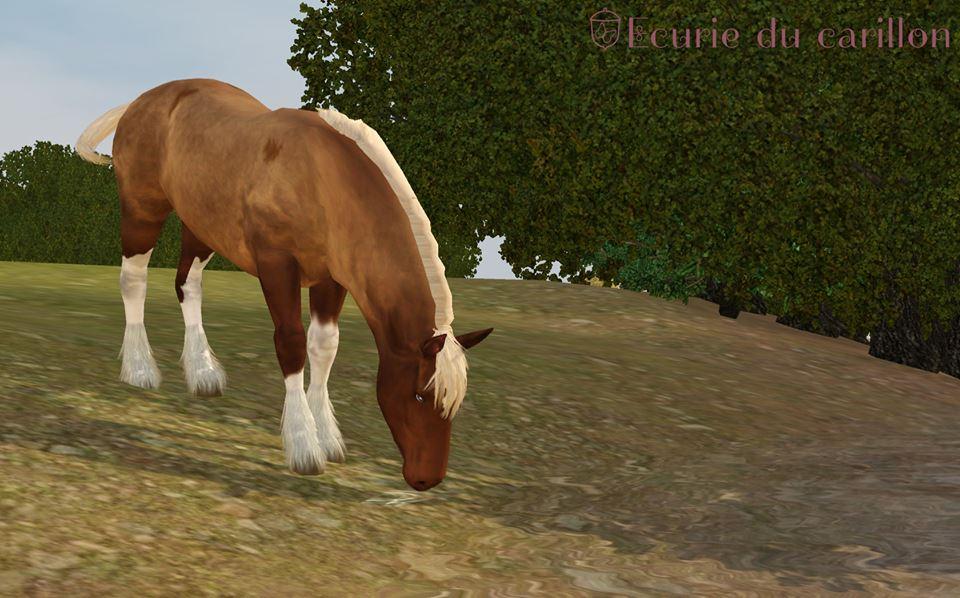 Screenshots Sims 3 : jument alezan silver rouan