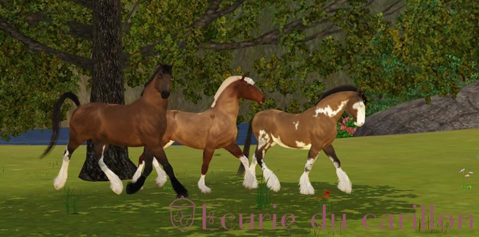 Screenshots Sims 3 : troupeau de chevaux Traits des plaines