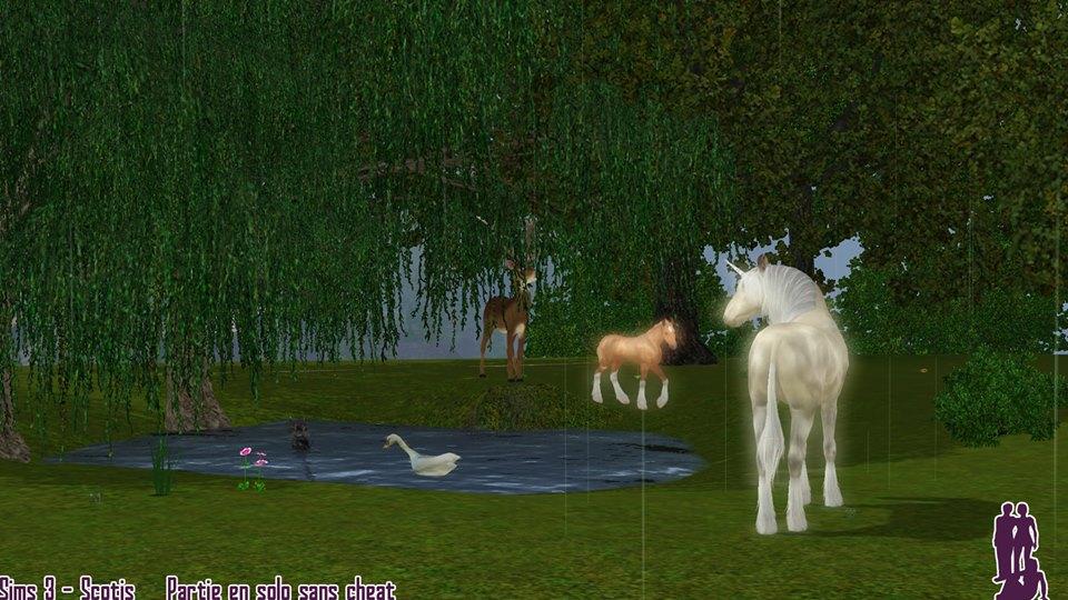 Screenshots Sims 3 : licornes et poulains licornes autour d'un lac