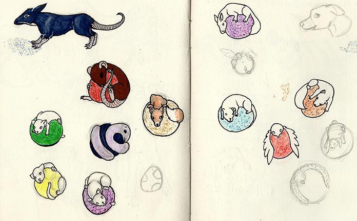 Cercle avec animaux (rat, renard, serpent, chat et oiseau)