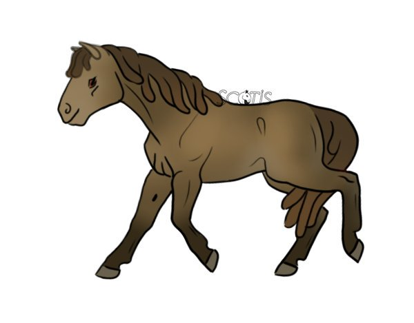 Dessin archives - Cheval dessin couleur ...