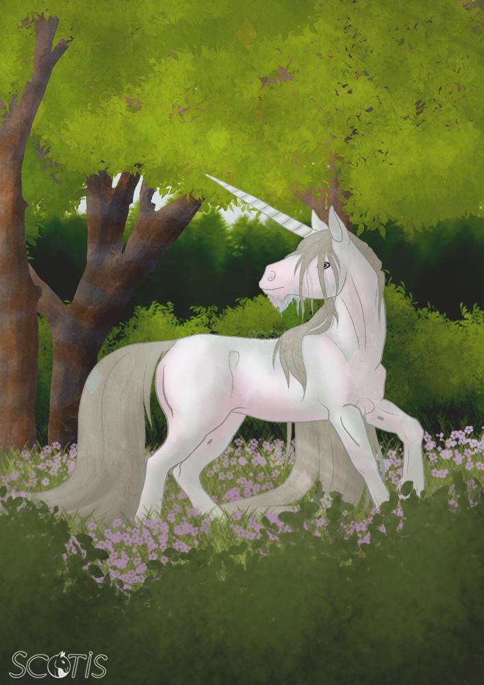 Licorne crème se promenant en sous bois parmis les fleurs roses, illustration par Scotis