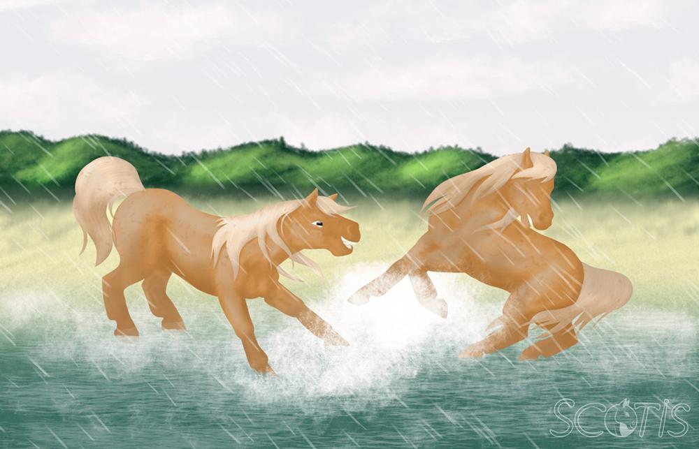 Deux chevaux palomino jouant dans la mer