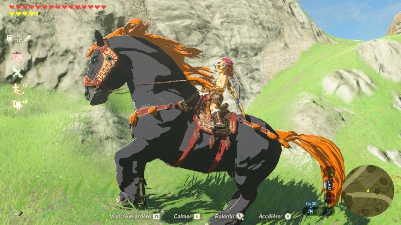 photo cheval zelda