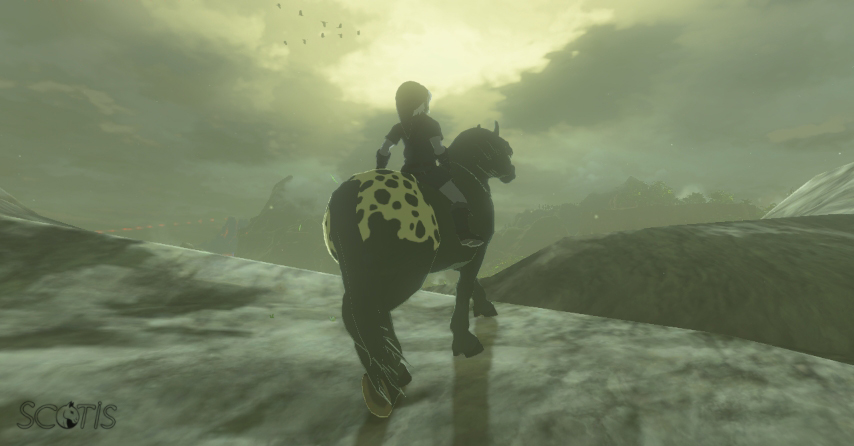 Dark Link et un cheval sauvage noir appaloosa se baladant dans les Monts Géminés.