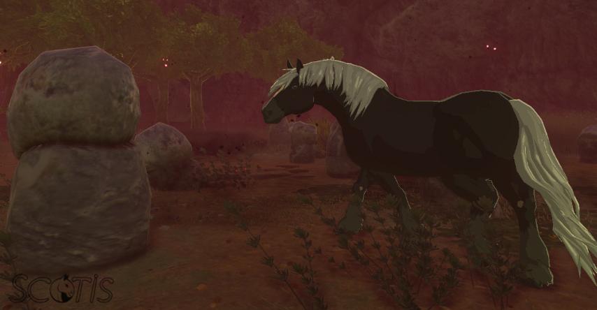 Cheval sauvage noir silver dans la Région d'Elimith.
