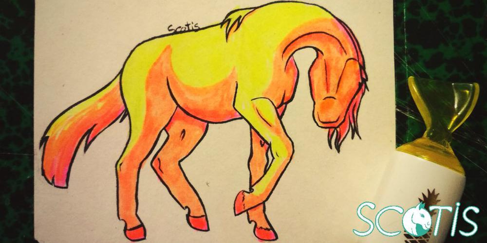 Cheval peint aux surligneurs par Scotis