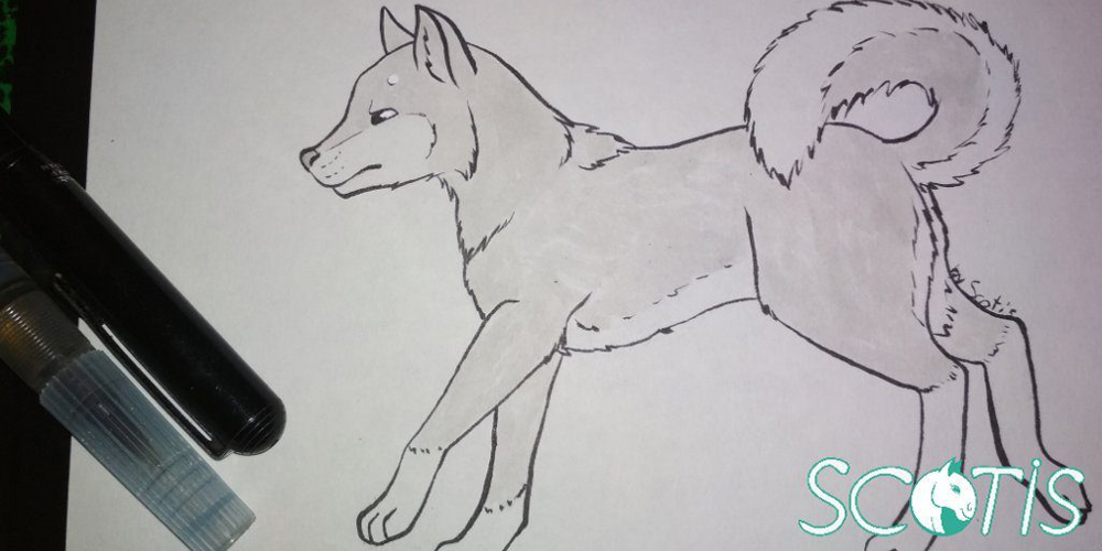 Petit chien à l'encre par Scotis