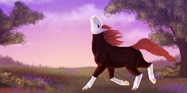 Illustration numérique par Scotis, dessin d'une jument alezan dans une prairie à l'aurore