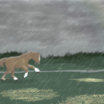 Sodas sous la pluie