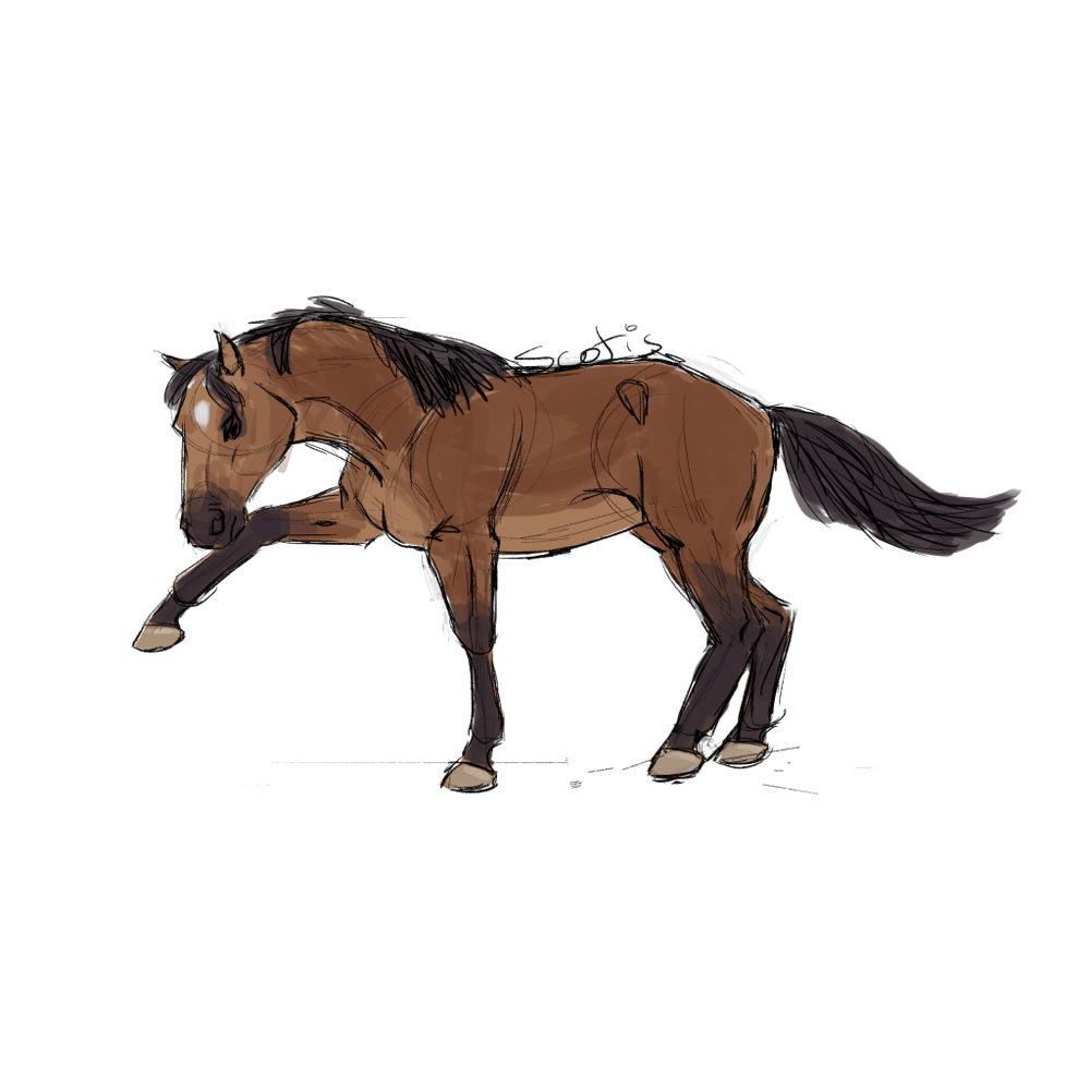 Cheval de selle bai faisant une jambette