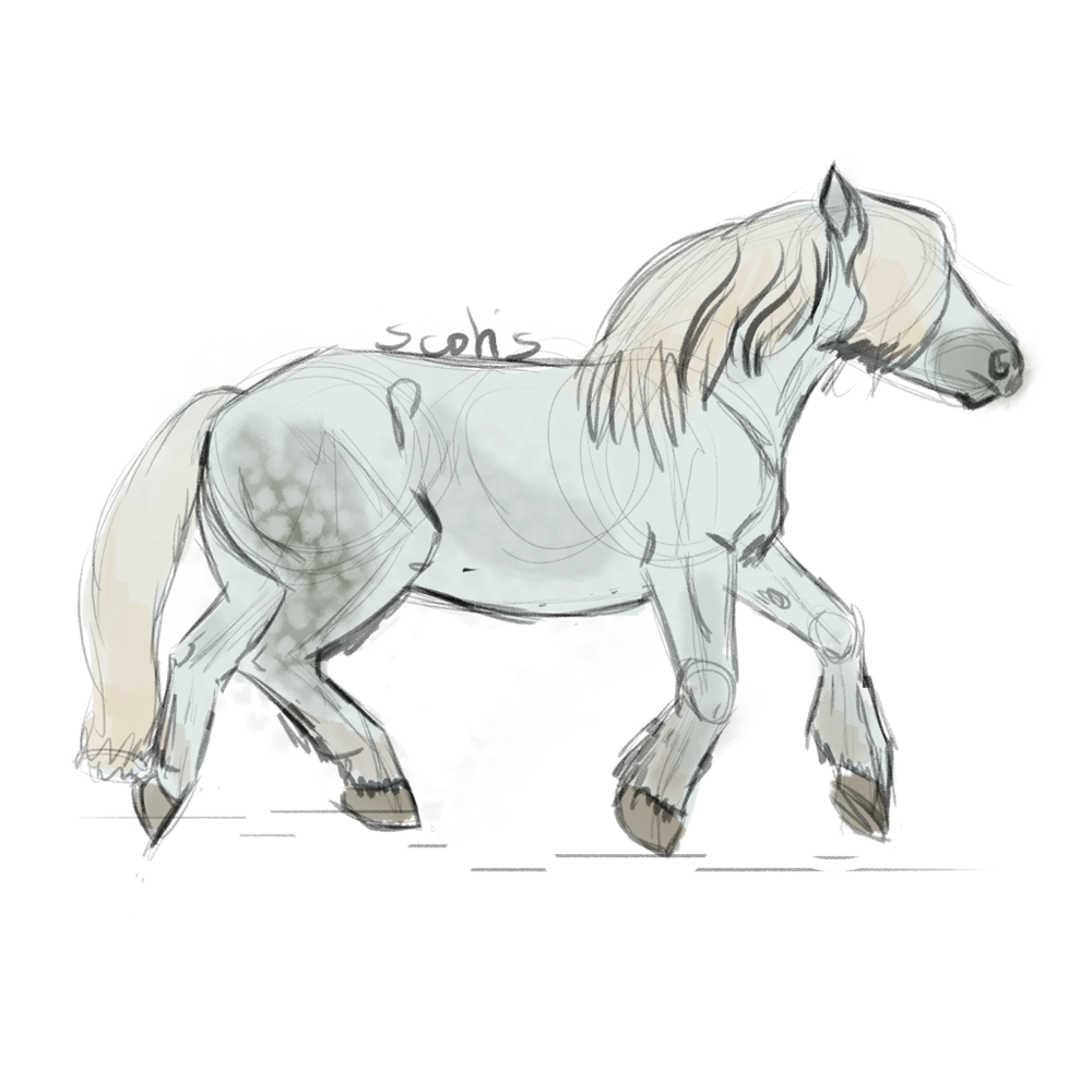 Cheval de trait gris au trot, sketch par Scotis