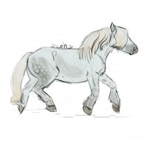 Cheval de trait gris au trot, sketch par Scotis