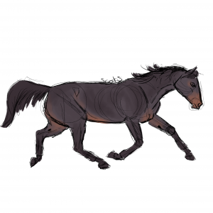 Cheval de selle noir au trot, sketch par Scotis