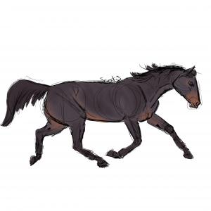 Cheval de selle noir au trot, sketch par Scotis