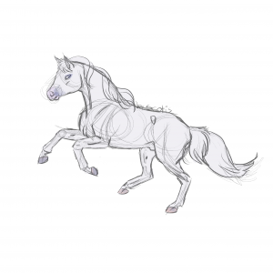 Cheval de selle gris au galop, sketch de Scotis