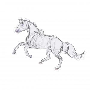 Cheval de selle gris au galop, sketch de Scotis