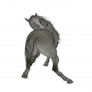 Cheval gris se grattant le dos, sketch par Scotis