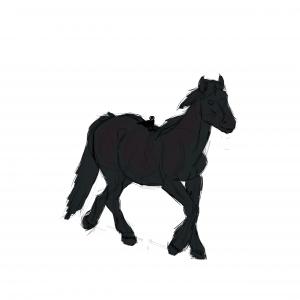 Cheval semi-trait noir marchant avec un corbeau sur le dos, sketch par Scotis