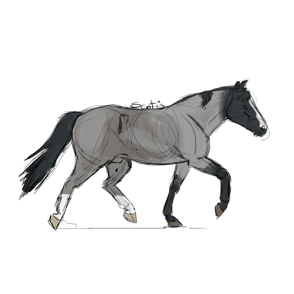Cheval semi-trait noir rouan au trot, croquis par Scotis