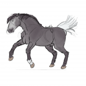 Cheval ibérique gris cabrant, sketch par Scotis